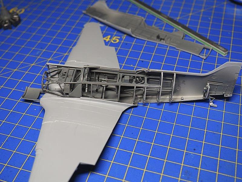P8293055-medium.jpg
