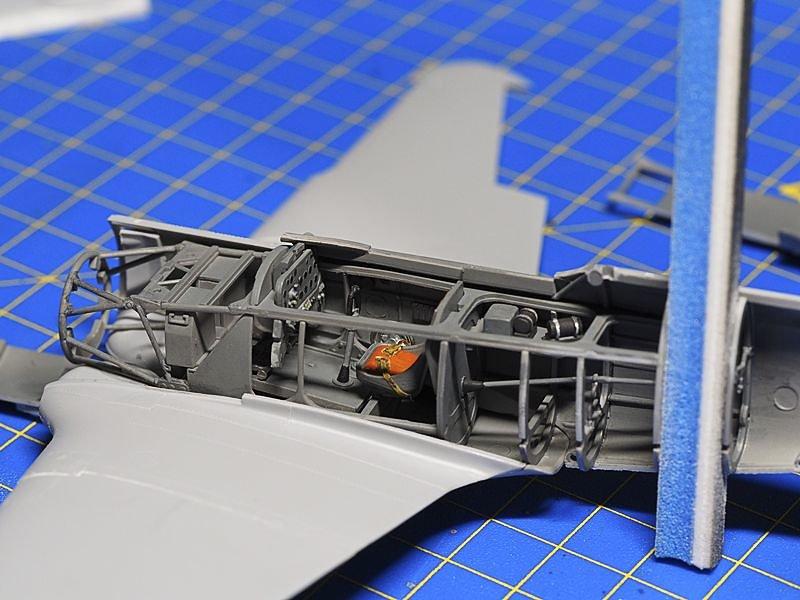 P8293059-medium.jpg